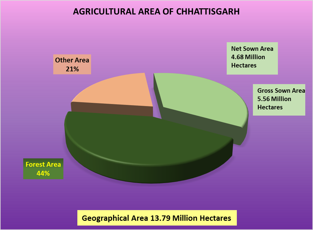 Agricultural Area of Chhattisgarh